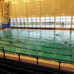 Garons Pool - Competition Pool 002