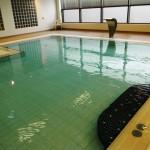 Garons Pool - Leisure Pool Mosaic Seat