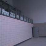Wall Elevation Spectators Seating Main Pool
