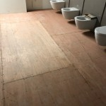 Ply in Toilets